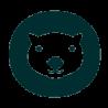 Wombat & Co